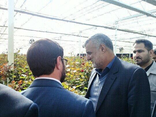 بازدید وزیر جهاد کشاورزی از مجتمع پرورش گل بیرجند