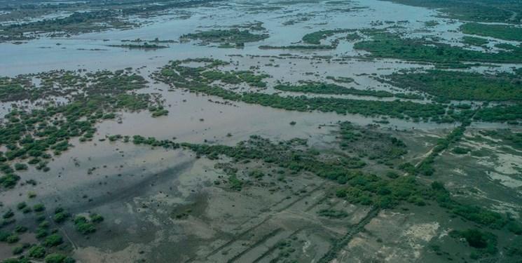 افزایش تلفات گردباد و طوفان در مالاوی، موزامبیک و زیمبابوه به 150 کشته