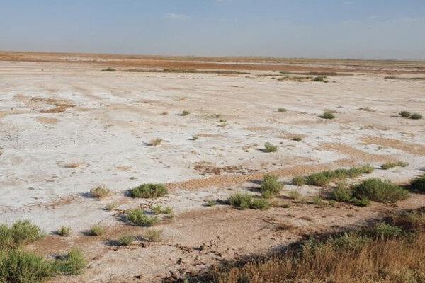 حمایت از 10 راهبرد حوزه خاک توسط معاونت علمی و فناوری