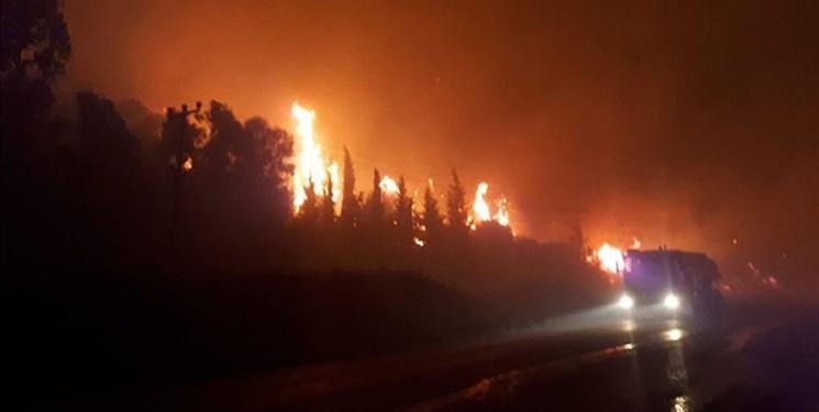 500 هکتار از اراضی جنگلی ترکیه در آتش سوخت