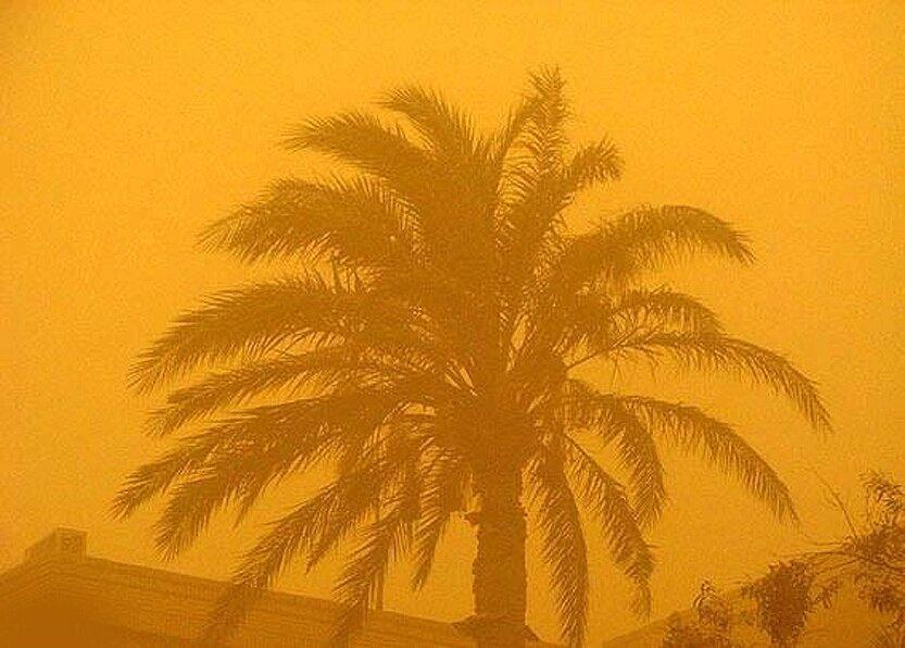 کانون های داخلی و خارجی گرد و غبار منشاءیابی شدند