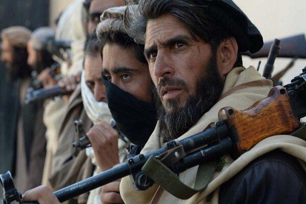 عضو ارشد طالبان در بلخ افغانستان کشته شد