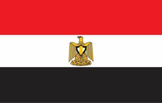 مصر خواهان نشست فوق العاده اتحادیه عرب شد