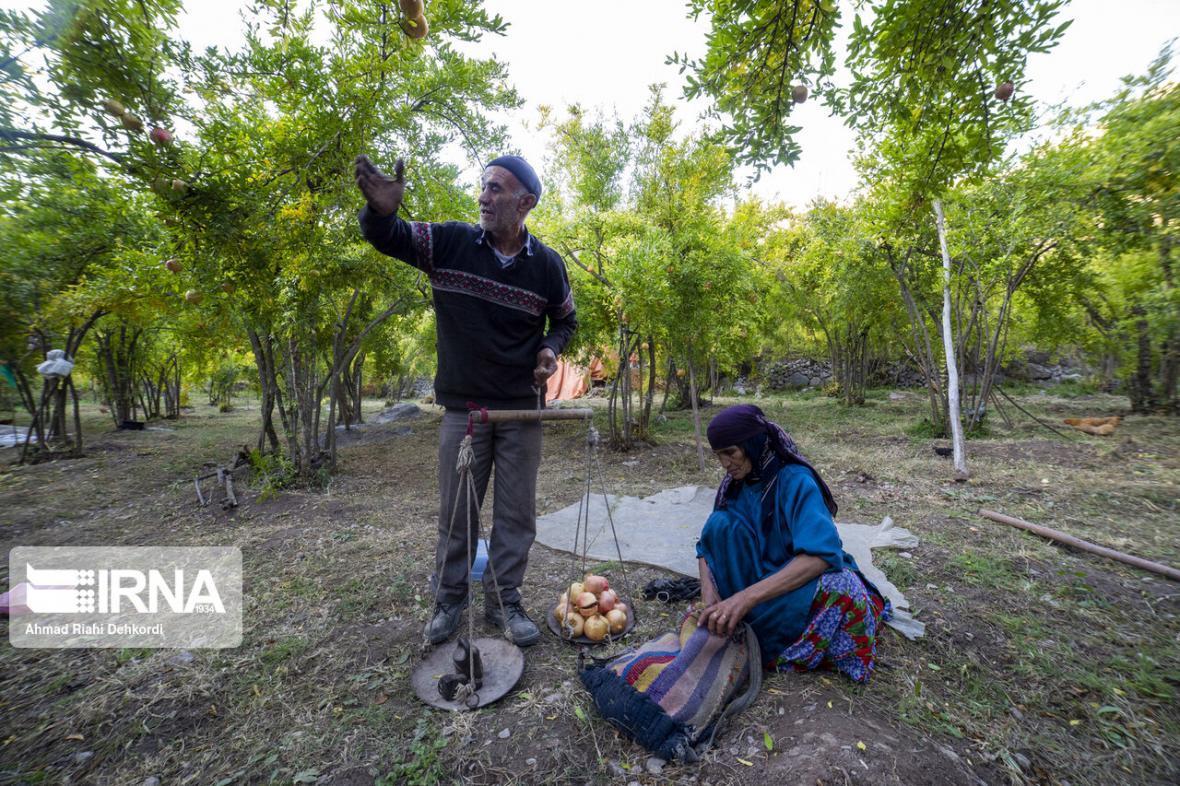 خبرنگاران برخورداری بیش از 6 هزار روستایی فاروج از مزایای صندوق بیمه