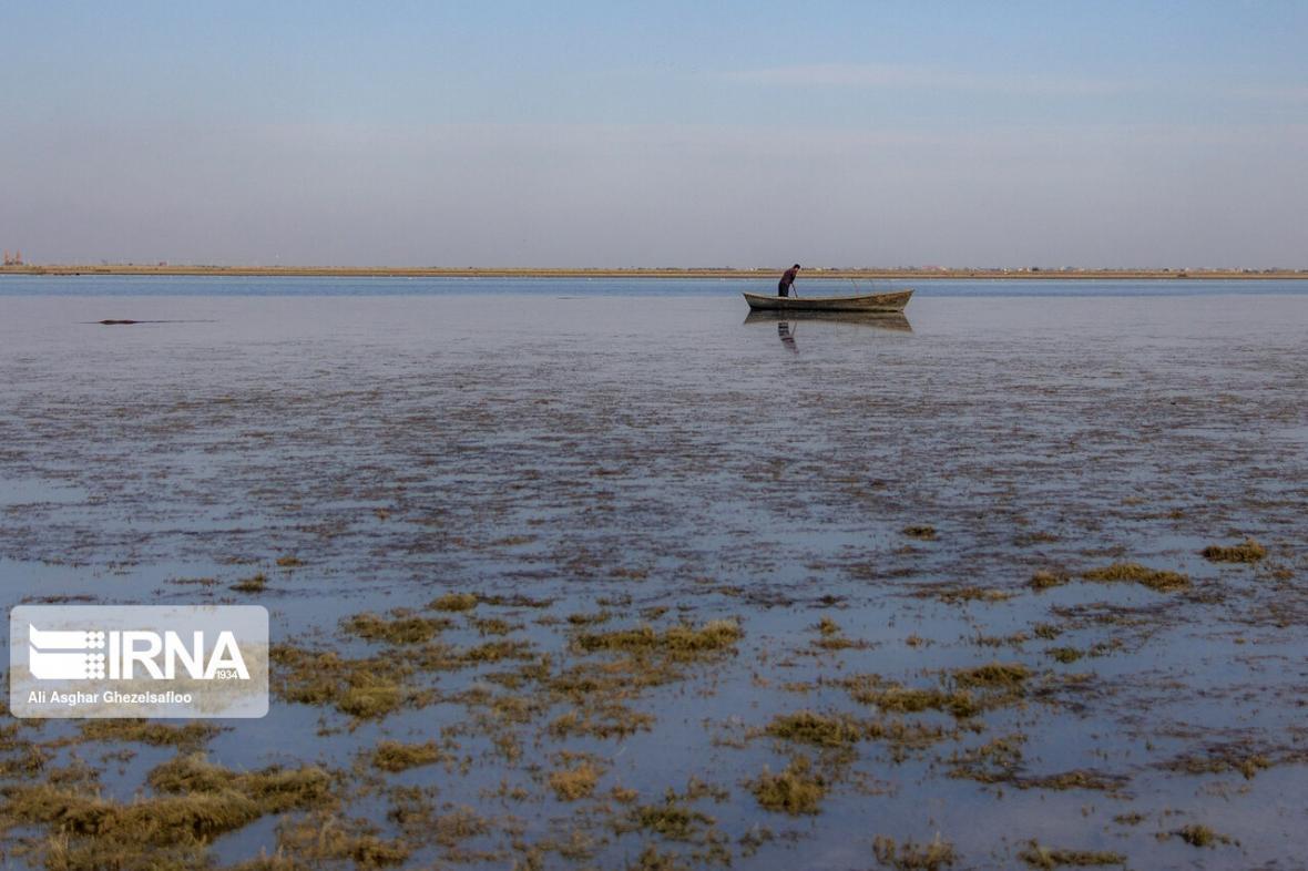 خبرنگاران خارج شدن جزیره 700 هکتاری از دل خلیج گرگان